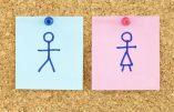 """Allemagne : le """"gender"""" montre son nez"""