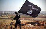 Emprise toujours plus grande des djihadistes en Irak: les Chrétiens sont en danger