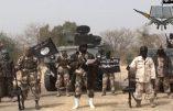 Les djihadistes de Boko Haram menacent le Cameroun et le Sénégal