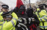 Les nervis antifas tentent d'empêcher Pegida de manifester à Londres