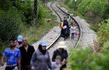 La Hongrie va dresser un mur de 4 M. de haut sur 175 km pour arrêter l'invasion des clandestins
