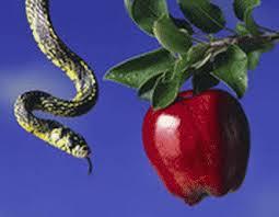 serpent-pomme