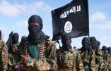 Jihadisme africain et wahhabisme : l'analyse de Bernard Lugan