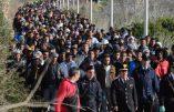Des mafieux italiens gagnent plus avec les immigrés qu'avec le trafic de drogue