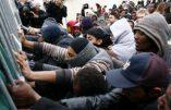 Des mineurs clandestins menacent l'assistante sociale: «on va te couper la gorge!»