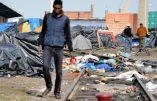 Les Calaisiens complètement abandonnés aux affronts et violences des clandestins racontent leur calvaire, la peur au ventre.