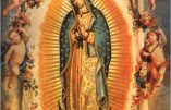 L'abbé Beauvais nous parle de Notre-Dame de Guadalupe (4)