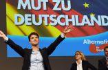 L'Alternative pour l'Allemagne (AfD) obtient davantage que prévu en Saxe-Anhalt (24,2%) et devient la 2e force politique de ce lander