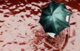 """Coronavirus – """"Vous avez du sang sur les mains"""", lance aux ministres un membre du personnel hospitalier"""