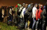 L'INSEE trafique les clandestins à Calais