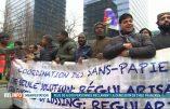 Manifestation autorisée d'immigrés illégaux...