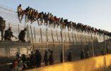 Le FMI et l'Espagne d'accord pour ouvrir les frontières de l'Europe aux clandestins