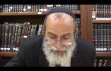 Le rabbin, le goy, la pédophilie et la zoophilie…