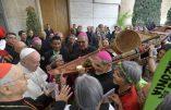 Les invités spéciaux au Synode sur l'Amazonie: fraternels, mondialistes, malthusiens, écolo-catastrophistes