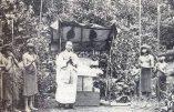 L'Eglise catholique et l'Amazonie, hier et aujourd'hui…