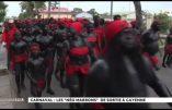 """A Cayenne, les """"Nèg Marrons"""" se fichent du politiquement correct métropolitain"""