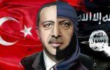 Voilà le portrait d'Erdogan affiché en Libye