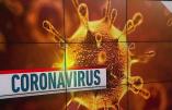 Le coronavirus vu avec le bon sens de Tarascon