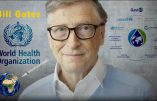 Comment Bill Gates s'est emparé de la Santé Mondiale (1)