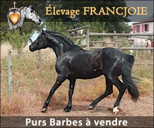 pub-elevage-francjoie-barbes
