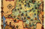 Congo belge : et si on disait la vérité ?