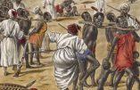 Tidiane N'Diaye raconte l'esclavagisme arabo-musulman qui castrait les esclaves Noirs
