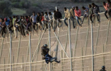 L'Espagne socialiste construit les murs anti-migrants les plus hauts du monde