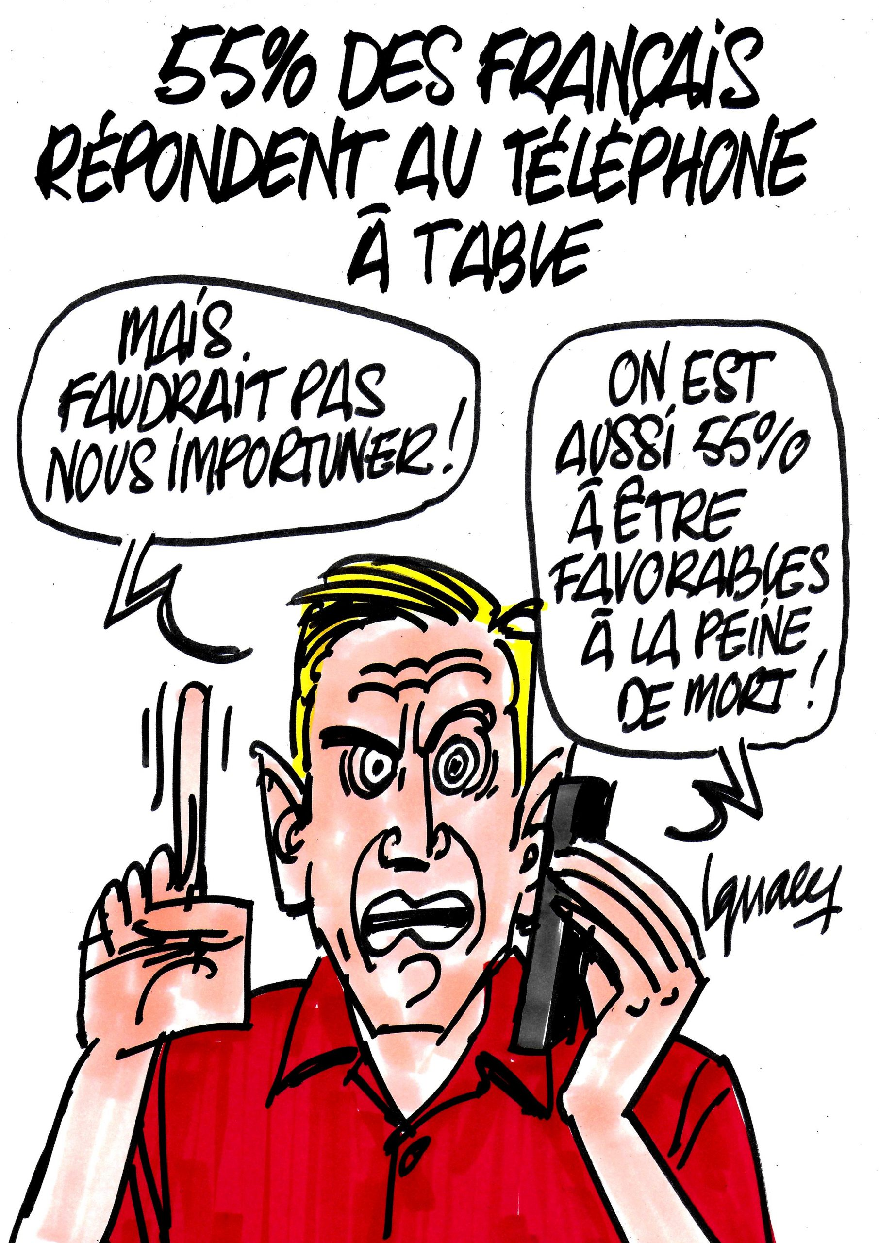 ignace_francais_telephone_a_table_sondage-mpi