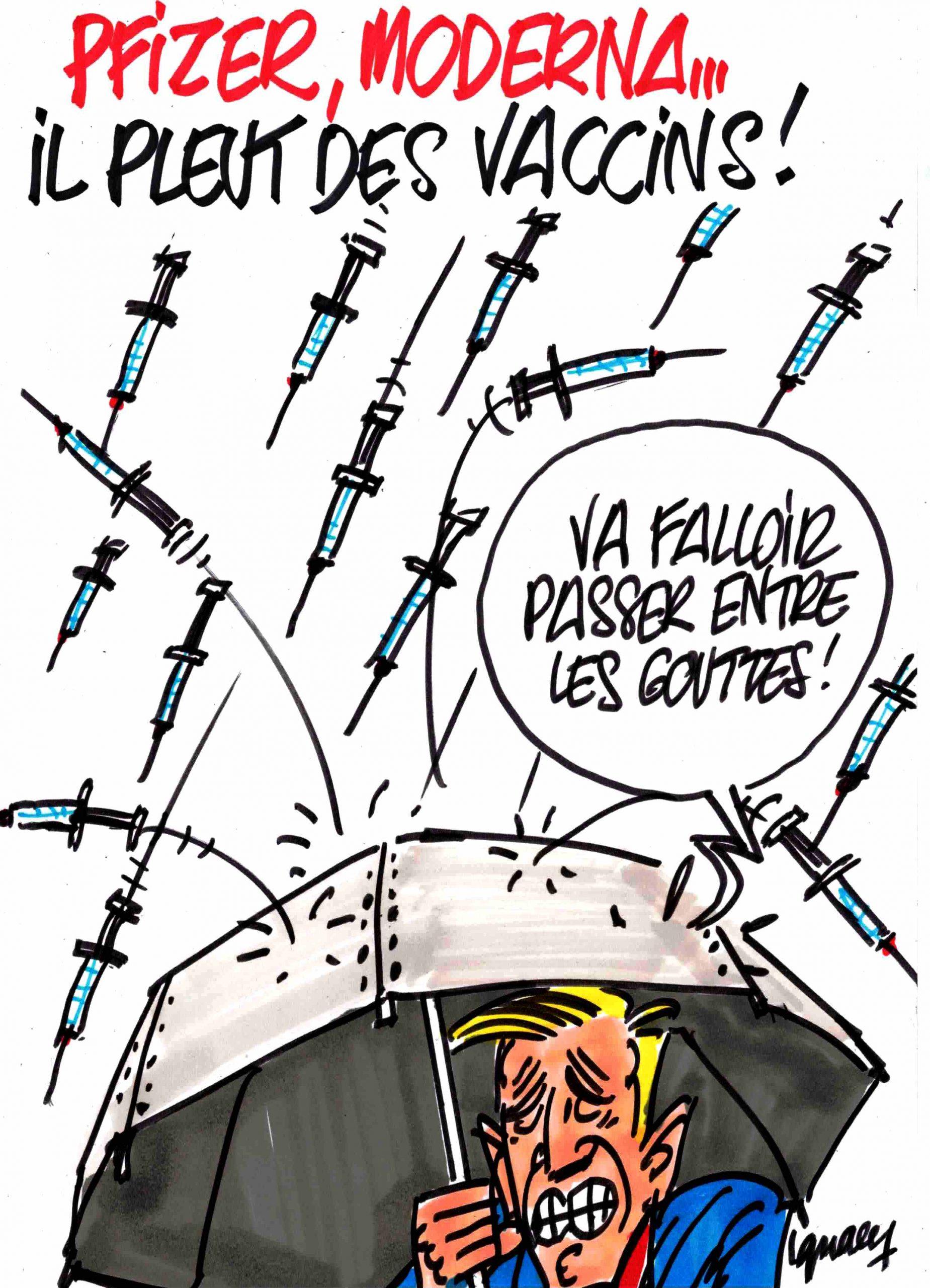 Ignace - Il pleut des vaccins !